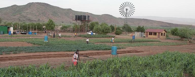 agricultura-lobur-furrows-recortada