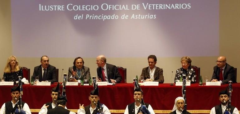 Premio-oviedo-veterinarios